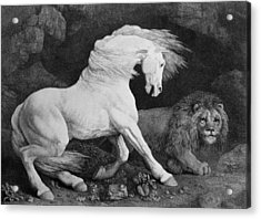 A Horse Affrighted By A Lion Acrylic Print by George Stubbs