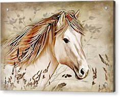 A Horse Of Course Acrylic Print by Nina Bradica