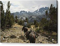 A Horse Packer In A High Mountain Acrylic Print by Gordon Wiltsie