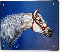 A Horse With No Name Acrylic Print by Fareeha Khawaja