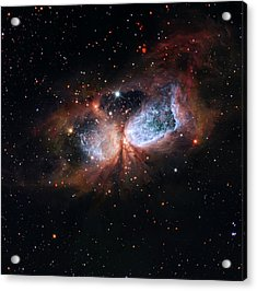 Acrylic Print featuring the photograph A Composite Image Of The Swan by Nasa