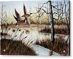 A 'jerry Yarnell' Study Acrylic Print