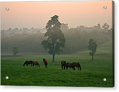 A Kentucky Morning. Acrylic Print