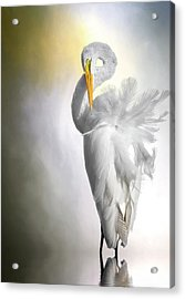 A Lady Needs Her Privacy Acrylic Print