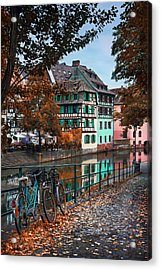A Leafy Lane In Strasbourg  Acrylic Print by Carol Japp