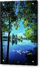 A Line Of Blue Acrylic Print