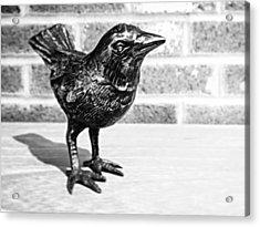 A Little Bird Acrylic Print by Joseph Skompski