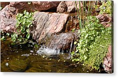 A Little Waterfall Acrylic Print by Susan Heller
