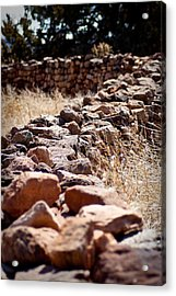 A Living Past Acrylic Print by Kandie  Kingery