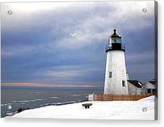 A Lonely Seagull Was Flying Over The Pemaquid Point Lighthouse Acrylic Print