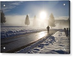 A Lonely Winter Acrylic Print by Gabriela Insuratelu