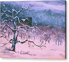 A Long Winter's Nap Acrylic Print