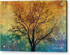 A Magnificent Tree Acrylic Print by Bedros Awak