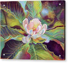 A Magnolia For Maggie Acrylic Print by Susan Jenkins