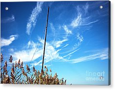Acrylic Print featuring the photograph A Mast Appears by John Rizzuto