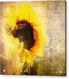 Acrylic Print featuring the photograph A Memory Of Summer by LemonArt Photography