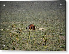 A Miner's Shack Acrylic Print by Nature Macabre Photography