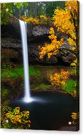 A Moment Of Silence Acrylic Print by Darren  White
