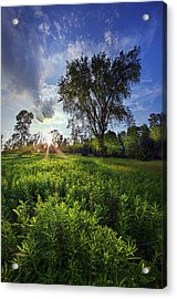 A Moment Or Two Acrylic Print by Phil Koch