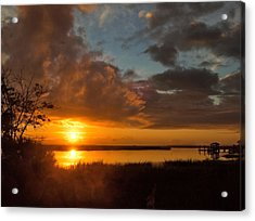 Acrylic Print featuring the photograph A New Beginning by Laura Ragland