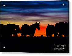 A Painted Sky Acrylic Print by Jim McCain
