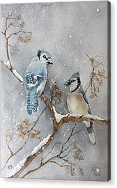 A Pair Of Jays Acrylic Print by Bobbi Price