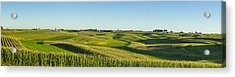 A Panoramic View Of Alfalfa Fields Acrylic Print by Scott Sinklier