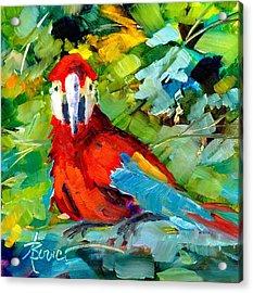Papagalos Acrylic Print