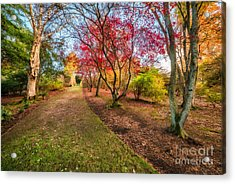 A Path Into Autumn Acrylic Print by Adrian Evans