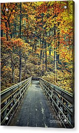 A Path Into Autumn Acrylic Print by Evelina Kremsdorf