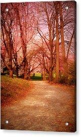 A Path To Fantasy - Holmdel Park Acrylic Print by Angie Tirado