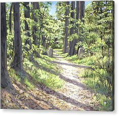 A Path Well-travelled Acrylic Print by Joseph Carragher