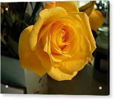 A Perfect Yellow Rose Acrylic Print