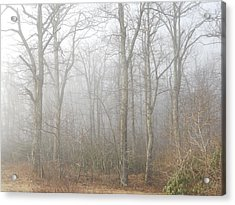 Acrylic Print featuring the photograph A Perfectly Beautiful Foggy Morning by Diannah Lynch