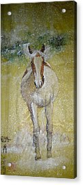 Acrylic Print featuring the painting A Picture Of Freedom by Debbi Saccomanno Chan