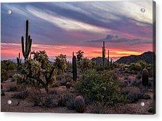 Acrylic Print featuring the photograph A Pink Kissed Desert Sunset  by Saija Lehtonen