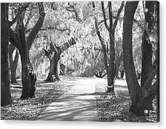 A Place For Contemplation Ir Acrylic Print by Suzanne Gaff