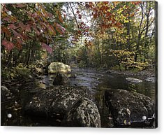 A Place To Ponder Acrylic Print by Everet Regal