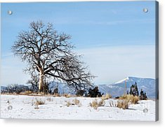 A Placid Winter Scene Acrylic Print