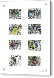 Acrylic Print featuring the drawing A Potters Garden by Kerryn Madsen-Pietsch