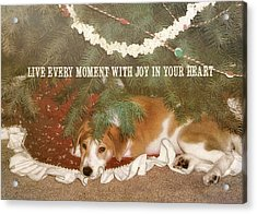 A Puppy For Christmas Quote Acrylic Print by JAMART Photography