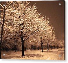 A Quiet Snowy Night Acrylic Print by Jackie Reitsma
