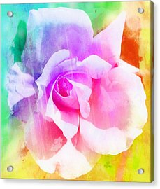 A Rainbow Of A Rose Two Acrylic Print by Cathie Tyler