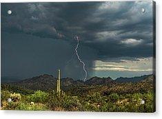 Acrylic Print featuring the photograph A Rainy Sonoran Day  by Saija Lehtonen