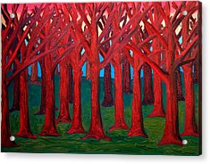 A Red Wood - Sold Acrylic Print by Paul Anderson