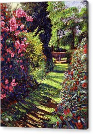 A Rhododendron Stroll Acrylic Print