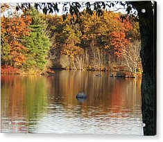 A Ripple In Time Acrylic Print by Barbara Hayes