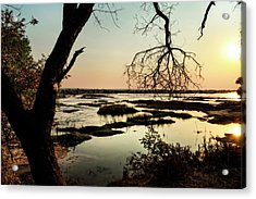 A River Sunset In Botswana Acrylic Print