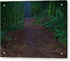 A Road Less Traveled Acrylic Print