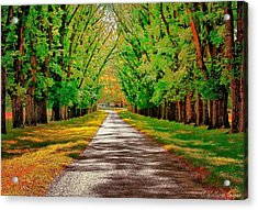 A Road Through Autumn Acrylic Print by Wallaroo Images